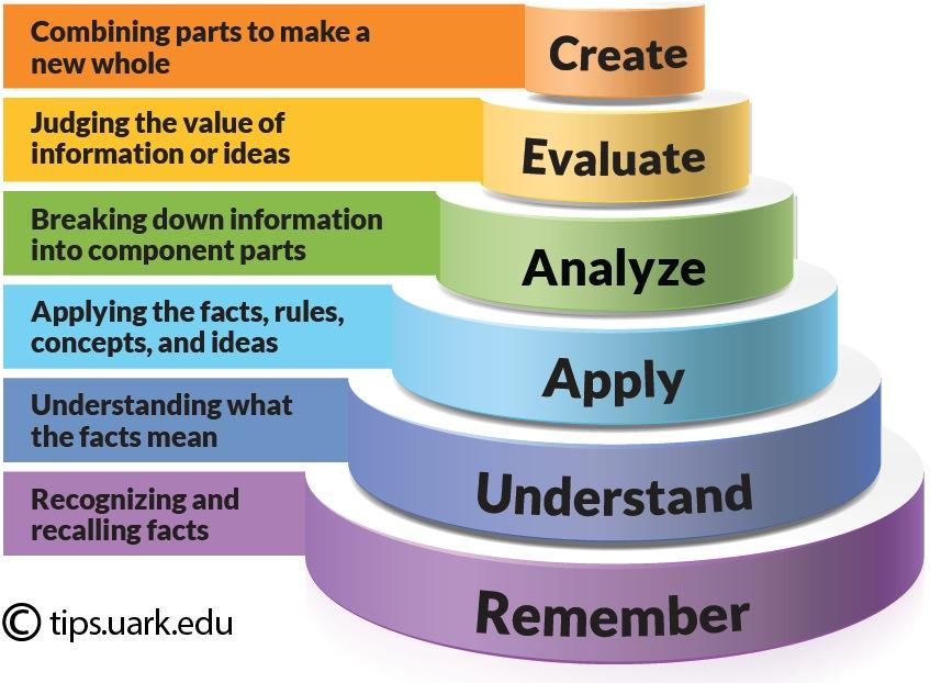 marketing taxonomy essay